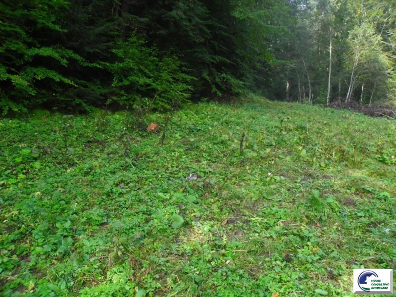 teren-constructii-de-vanzare-brasov-predeal-50162001.jpg